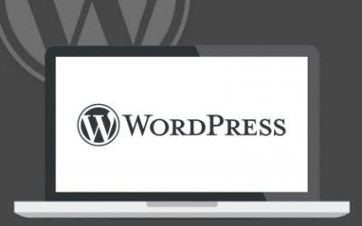 Los 4 elementos de WordPress que debes conocer
