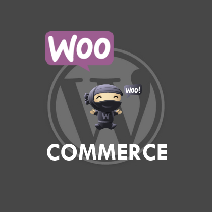 Tutorial Plugin Woocommerce